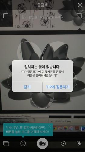 koreanapps-flowersearch20