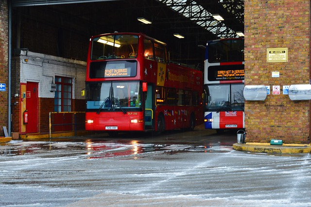 Sightseeing Buses
