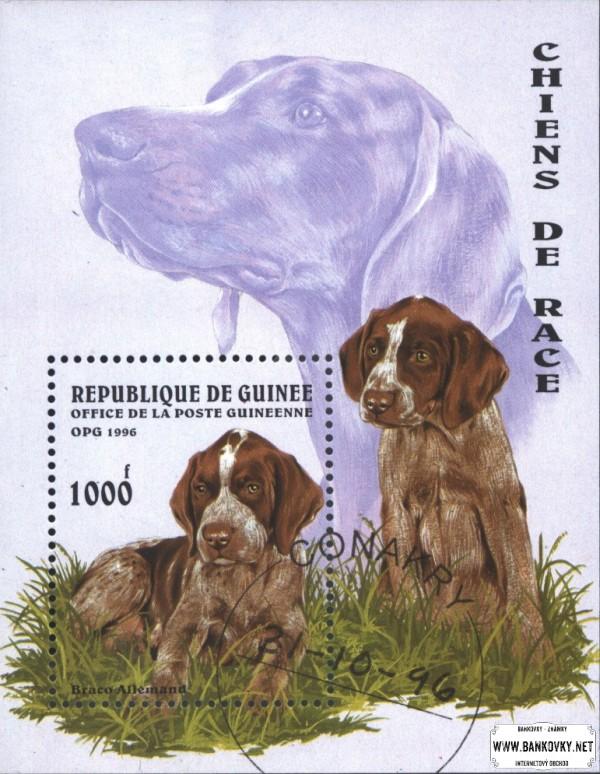 Známky Guinea 1996 Psy, razený hárček