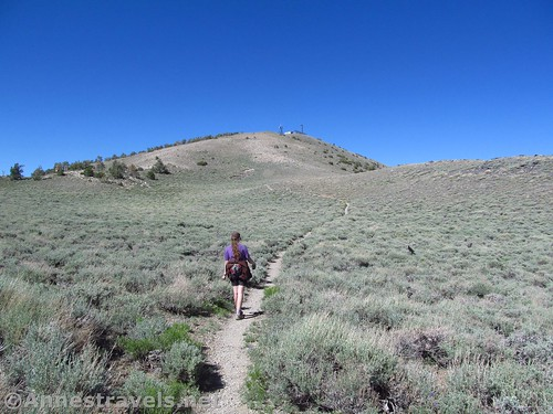 Hiking the trail back toward Rogers Peak, Death Valley National Park, California