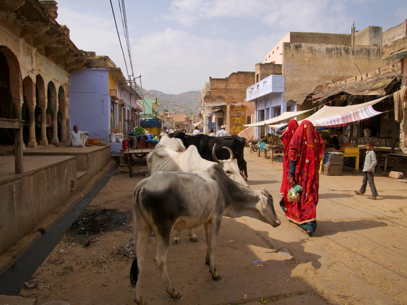 260-India-Khandela