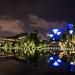 Gardens by the bay at night Singapur, Nachtaufnahme