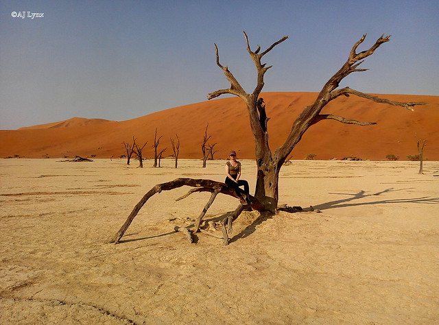 Featured medium photo of Sossusvlei on TripHappy's travel guide