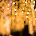 Small photo of Ayala Triangle Lights