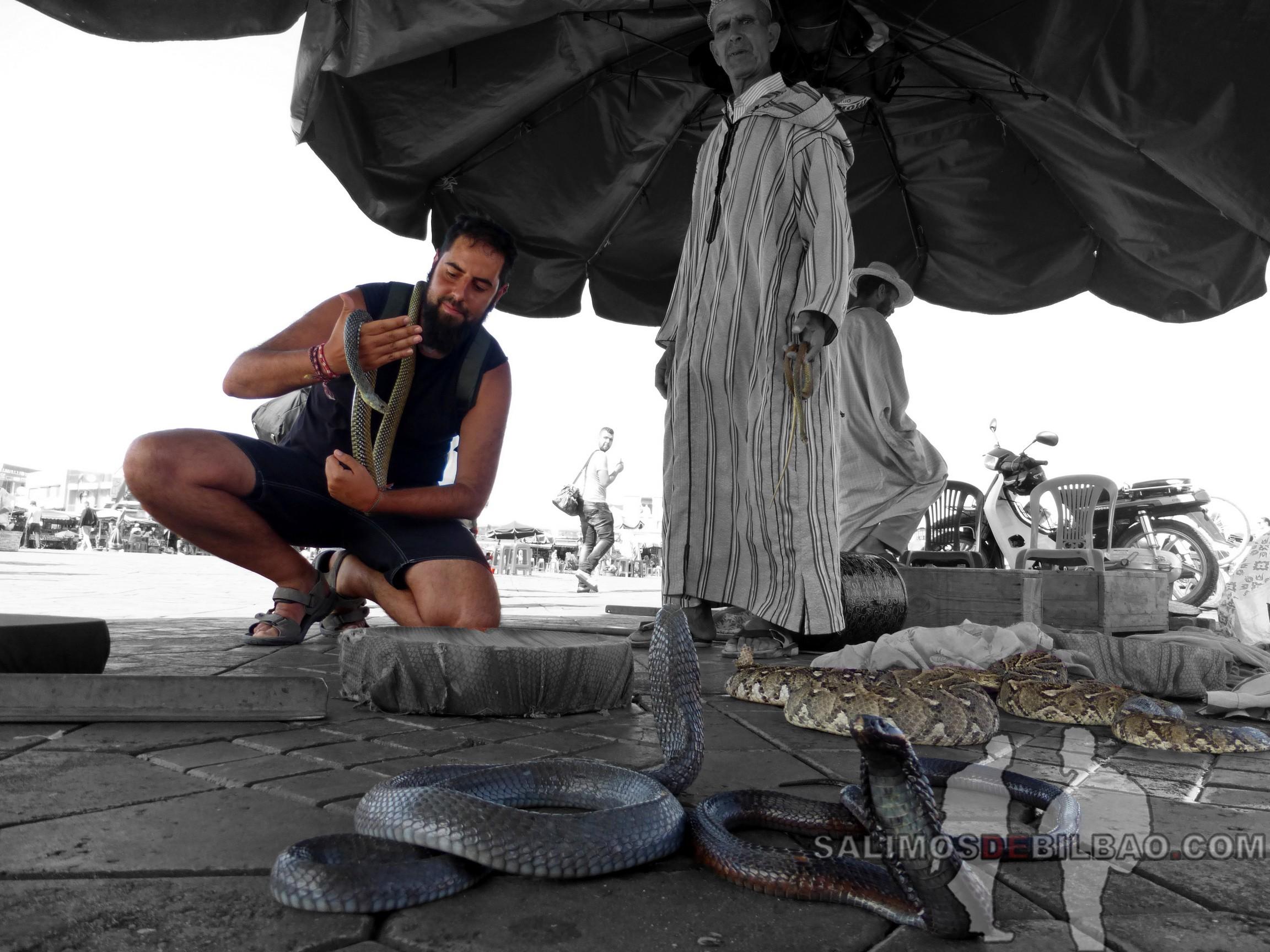 693. Katz con las serpientes, Marrakech