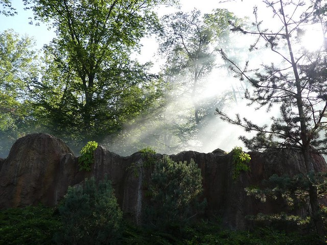 Kamtschatkabär-Gehege, Zoo Brno