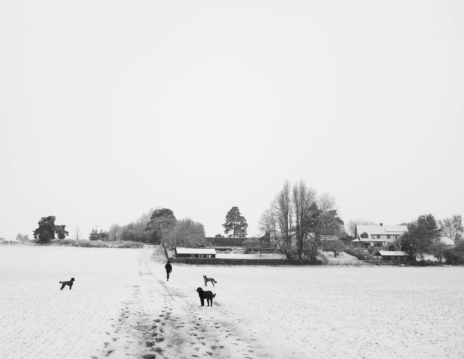 December Snow 2017