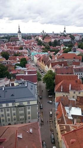 Старый Таллин. Вид сверху.