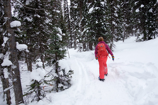 Snowshoeing - Rawson Lake - Jan 2018-11