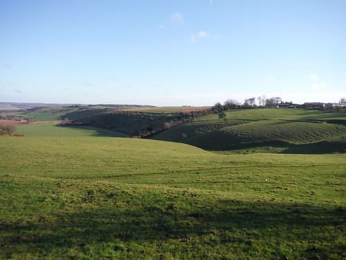 Streatley Warren (ridge in the SW corner)