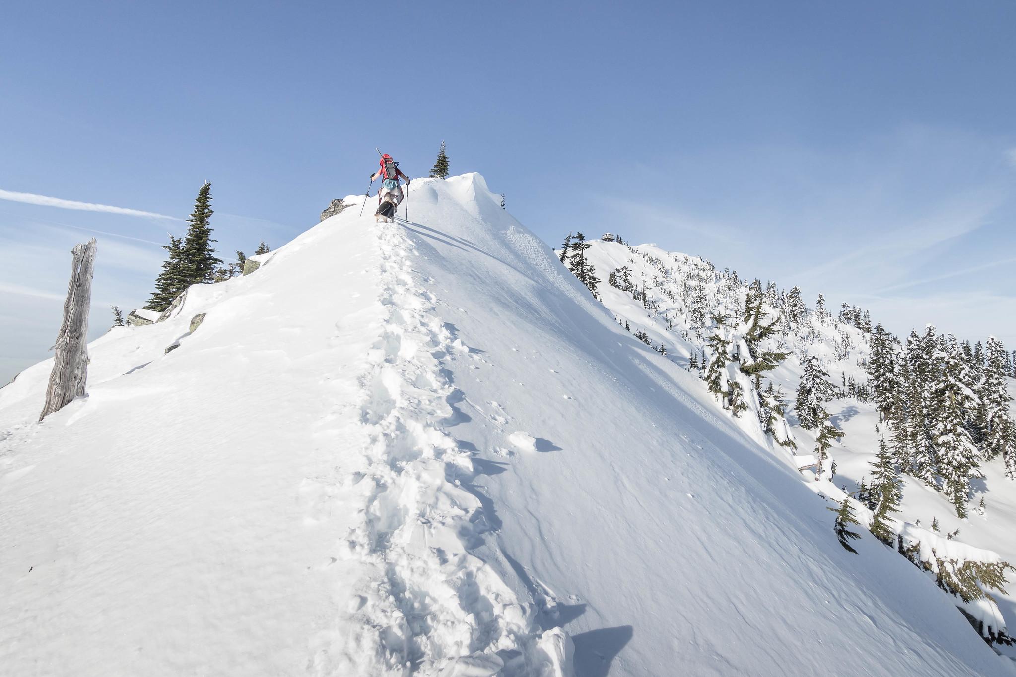 Snow arête