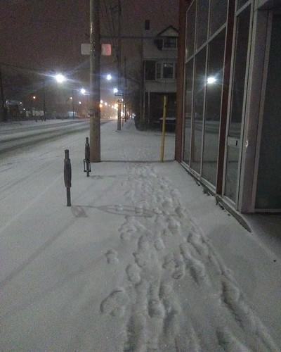 White path #toronto #dupontstreet #dovercourtvillage #white #snow #path #sidewalk #night