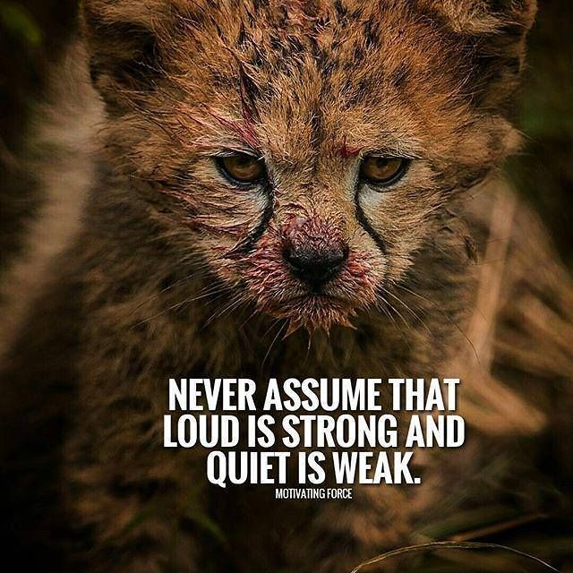 Inspirational Positive Quotes :Never assume that loud is strong..