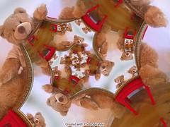 Bear_03
