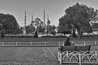 Istanbul - Blue Mosque Sultanahmet park morning bw