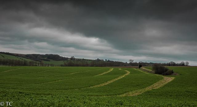 Landschap rond Mechelen Landscape, Sony DSC-RX10, 24-200mm F2.8