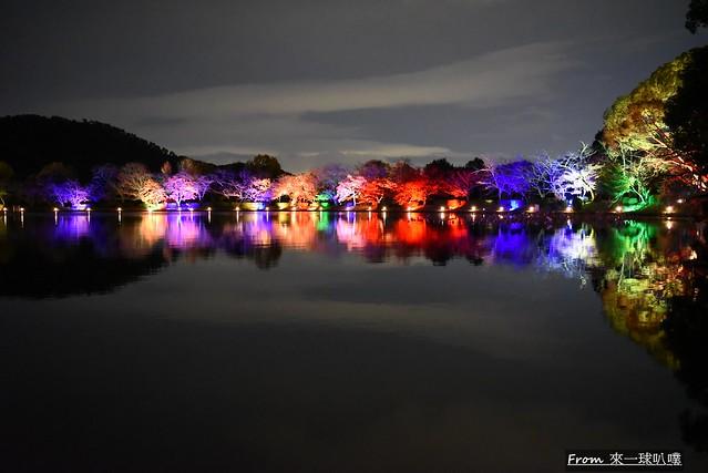 大覺寺夜楓-真紅の水鏡03
