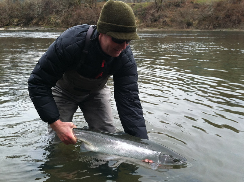Bright Wild Winter Steelhead