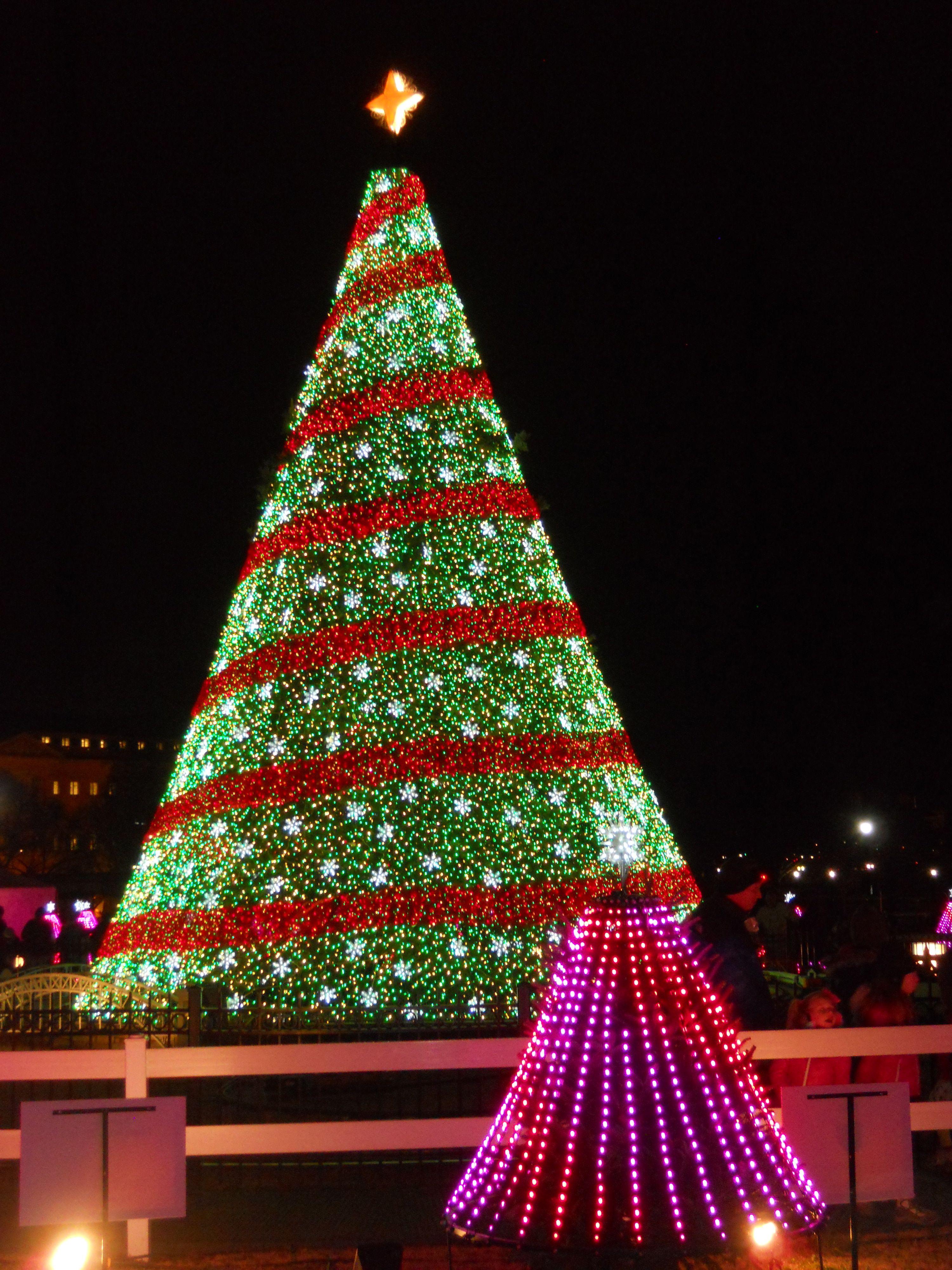 U.S. National Christmas Tree on December 29, 2014