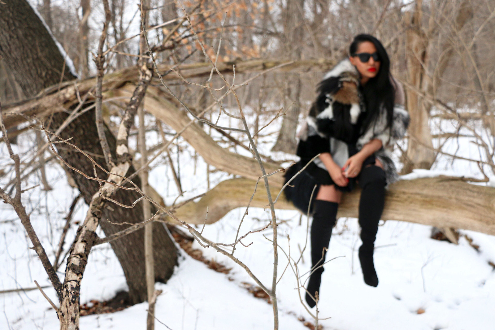 fur fox sake 9