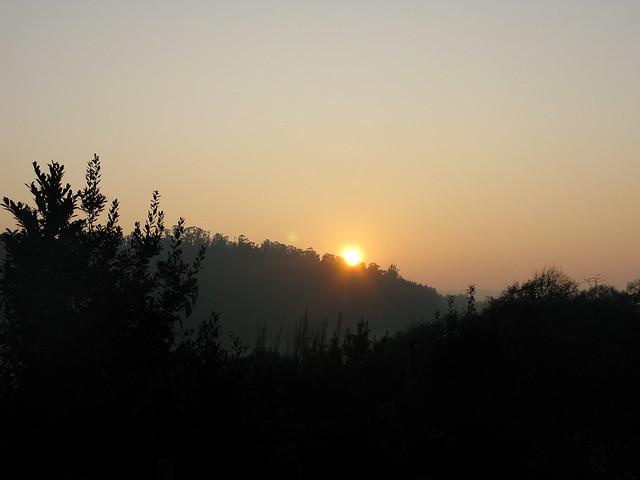 Freitag, den 25. September: Pedrouzo / Arca do Pino → Monte do Gozo
