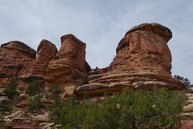 Elephant Canyon / Druid Arch Hike