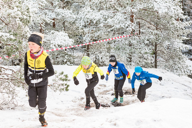 Espoo Trail Run 6.12.2017