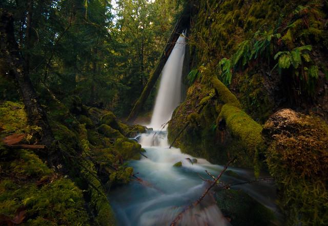 Lower South Fork Cripple Creek Falls - 40 ft