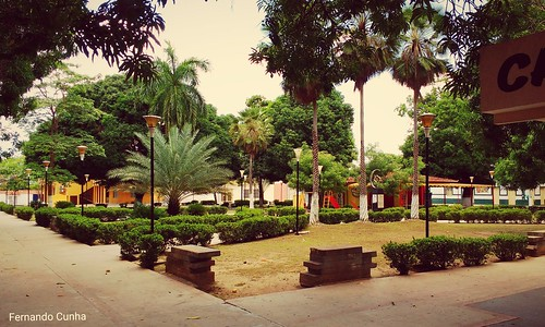 Carolina Maranhão
