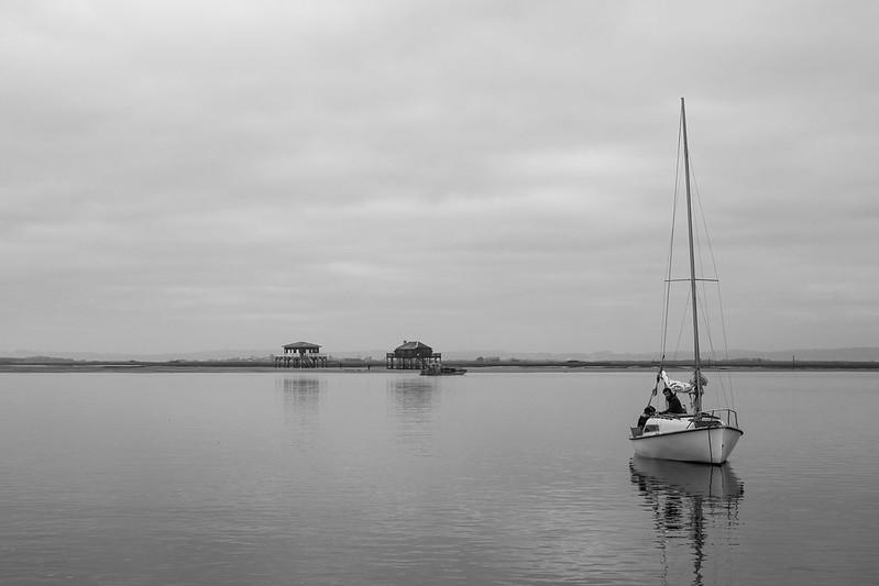 En bateau sur le bassin d'Arcachon - Les cabanes tchanquées et l'île aux oiseaux - hiver 2016