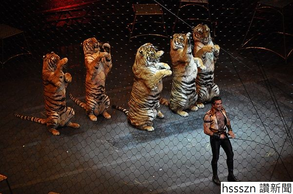 Ringling_brothers_over_the_top_tiger_601_399