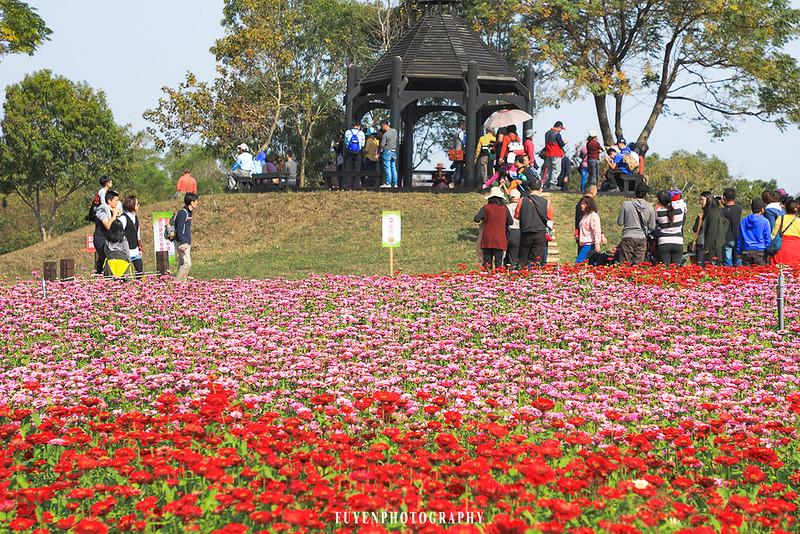 2017臺中國際花毯節19
