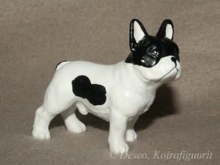 Ranskan bulldoggi, 3_wm