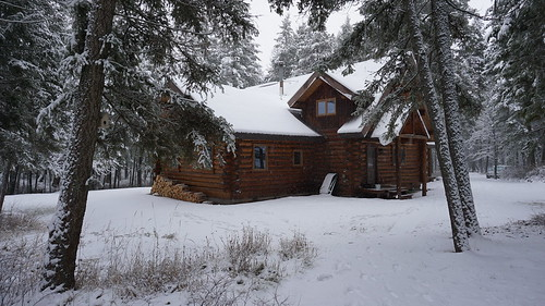 The log cabin in the state forest