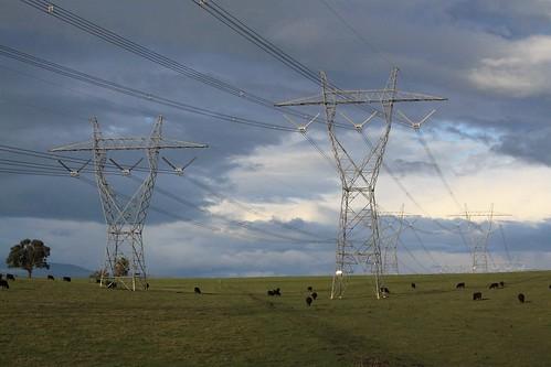 Transmission lines at Coldstream, Victoria