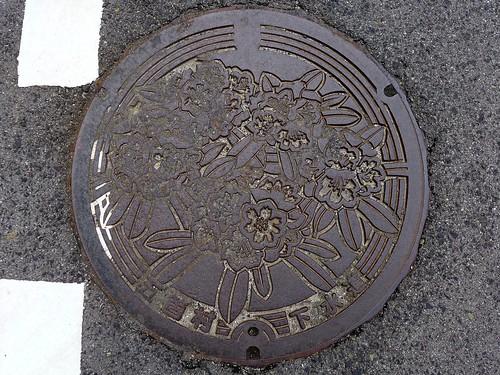 Goka Shimane, manhole cover (島根県五箇村のマンホール)