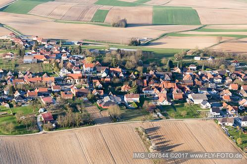 Oberlauterbach (0.89 km South-West) - IMG_097844