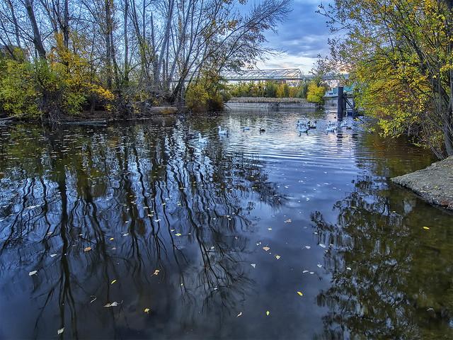 En el espejo del río ....