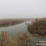 Niebla en las lagunas de La Guardia (Toledo) 24-12-2017