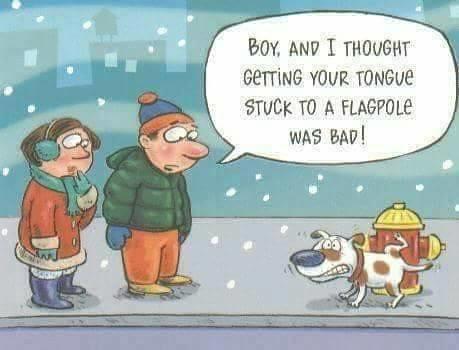 Frozen dick.