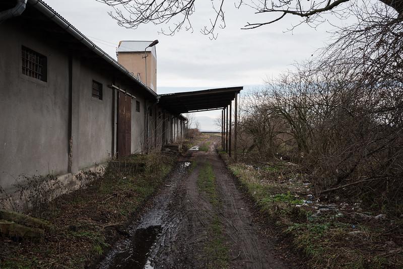 Line 262, 15,3 km, Borek Strzeliński/Großburg, 01.01.2018