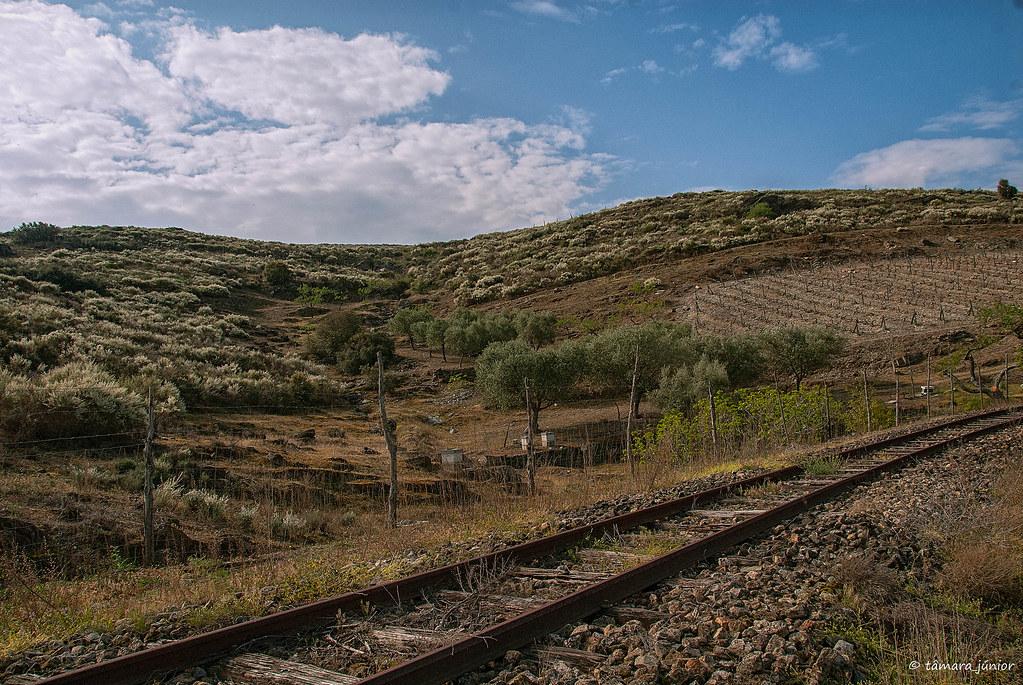 2012 - Linha Sabor (Pocinho-Moncorvo) 116