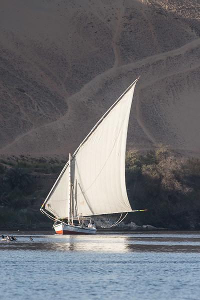 Nile felucca