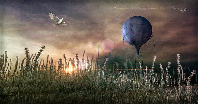 Voyages through the soul .......... fifth