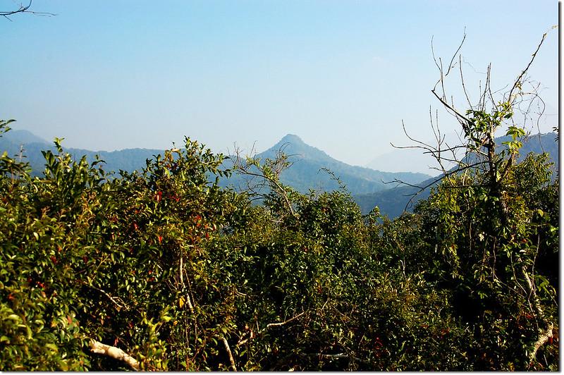 西大社山山頂東南望戶亞羅山