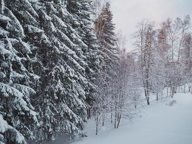 winter wonderland suomi talvi