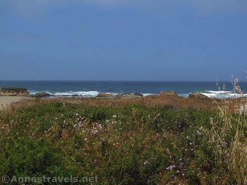 Views along the trail to Glass Beach, California