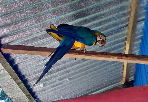Punto-de-Aguila-8