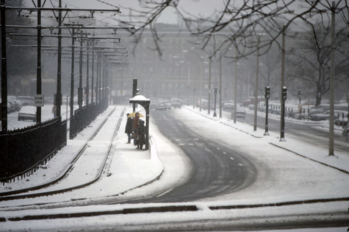 Commonwealth Avenue, Boston - 1986
