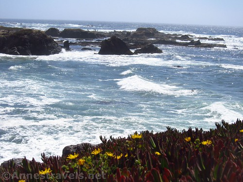 Looking back toward Glass Beach from the trail to the north, California